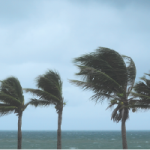 How to support employees affected by natural disasters